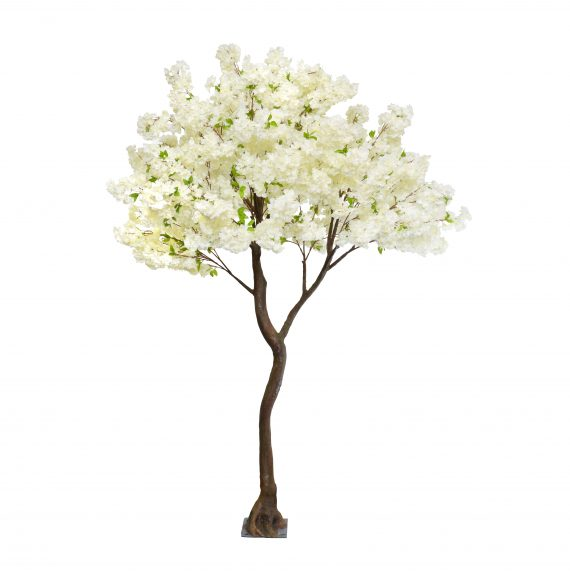 set into a highly detailed lifelike artificial stem 2.8m Cream Cherry Blossom Artificial Tree -For Hire- is a beautifully shaped tree