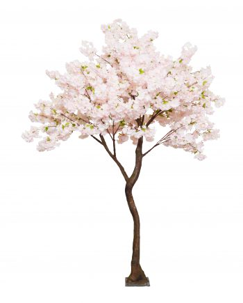 2.8m Pink Cherry Blossom Artificial Tree Twisted -For Hire-
