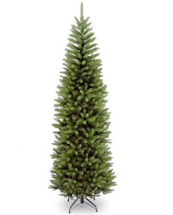 kingswood fir pencil tree