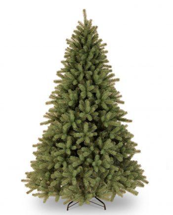 lakeland spruce 8ft
