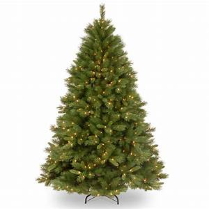 winchester 9ft tree