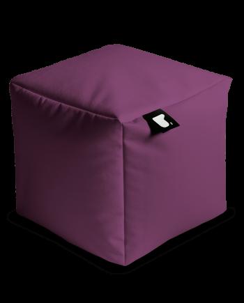 indoor-box-berry